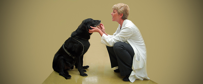Dr. Pluhar with dog