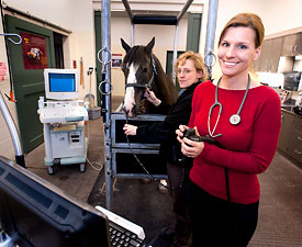 Molly McCue with a computer and horse