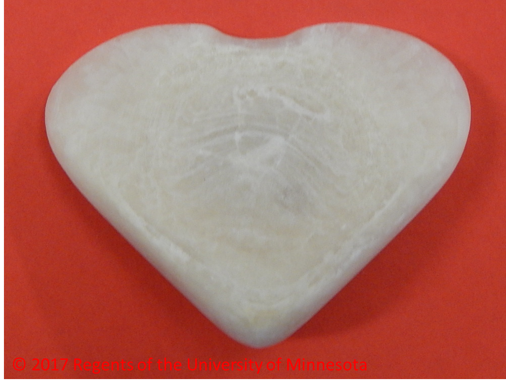 image of a canine struvite urolith that has a unique heart shape