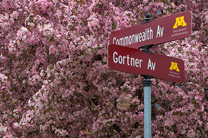 Street signs with flowers at Commonwealth and Gortner