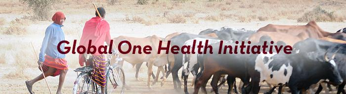 Global One Health Initiative