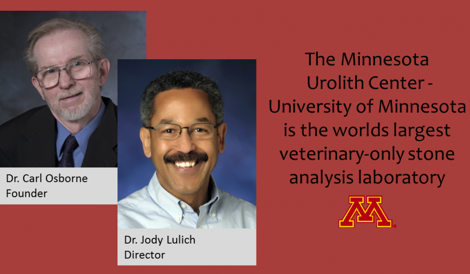The Minnesota  Urolith Center -University of Minnesota is the worlds largest veterinary-only stone  analysis laboratory