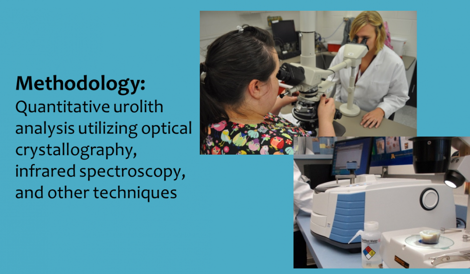 Methodology: Quantitative urolith  analysis utilizing optical crystallography, infrared spectroscopy, and other techniques