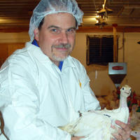 Dr. Kent Reed with turkeys.