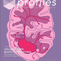 Profiles, Summer 2018 Cover